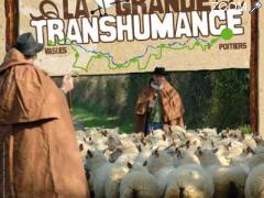 picture of Grande Transhumance